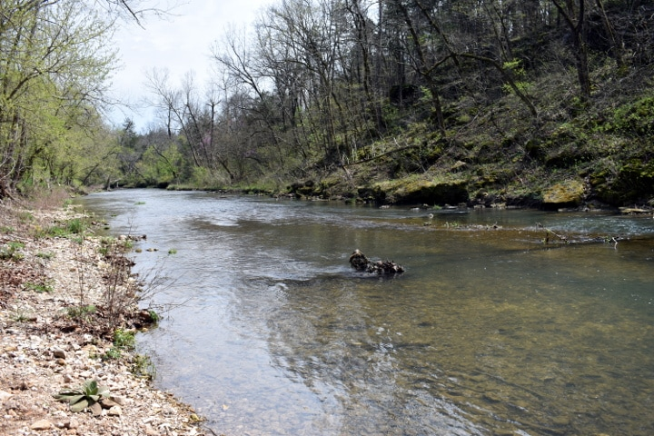 Roaring river state park and hatchery missouri for Roaring river fishing hours